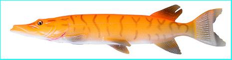 Savage Gear 3D Line Thru Pike 20cm 66g Albino Pike 50432
